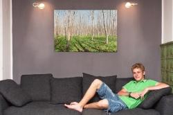 neuer Besitzer (mit freundlicher Genehmigung), 120 x 80 cm AluDibond